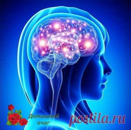 Как улучшить кровоснабжение головного мозга.