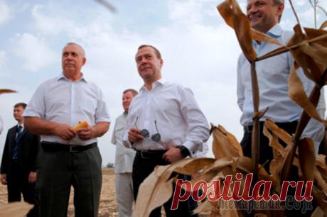 Медведев предложил изменить стандарт питания россиян Глава правительства России Дмитрий Медведев предложил отказаться от концепции минимального набора продуктов питания и перейти к базовому набору. В программе «Диалог» на телеканале «Россия 24» он призн...