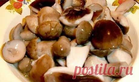 Маринады для грибов: пряно, вкусно, надежно | Кулинарные записки обо всём | Яндекс Дзен