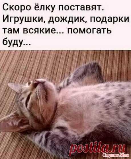 Жизнь кошачья. 18 - ВЯЗАНАЯ МОДА+ ДЛЯ НЕМОДЕЛЬНЫХ ДАМ - Страна Мам