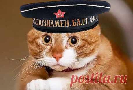Искра Селезнева | ВКонтакте