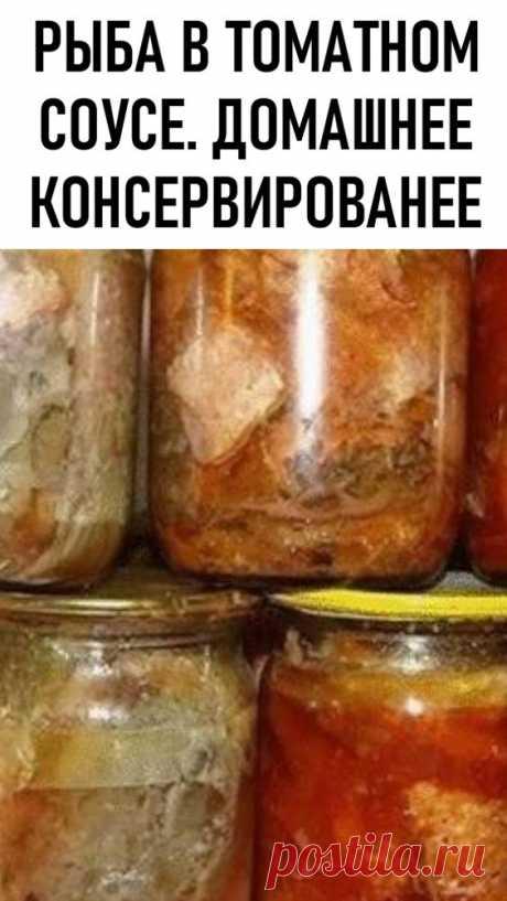 Рыба в томатном соусе. Домашнее консервирование. Таким способом можно приготовить аппетитные домашние консервы из нескольких видов.