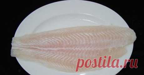 Why fish a pangasius it is impossible to eat ~