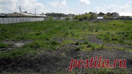 Продам земельну ділянку с.Циркуни - Земельні ділянки Харків на board.if.ua код оголошення 52182