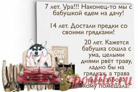 Дача: как меняется отношение к ней в возрасте от 7 до 77 лет   Творчество'нутая   Яндекс Дзен