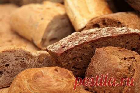 Ученые объяснили, почему не стоит говорить хлебу «Нет» | Вилкин 👩🍳: рецепты и лайфхаки  | Яндекс Дзен