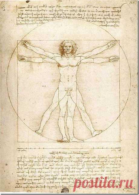 """«Витрувианский человек». 1487. Витрувианский человек – всемирно известный рисунок с сопроводительными замечаниями. Нарисовал его Леонардо да Винчи в одном из своих дневников примерно в 1487 году. Рисунок изображает обнажённое мужского тело, руки и ноги которого запечатлены одновременно в двух позициях. Рисунок хранится в венецианской галерее Академии и выставляется лишь по особым случаям.Древнеримский архитектор Витрувий в книге III трактата """"Архитектура"""" дал подробное описание того, к"""