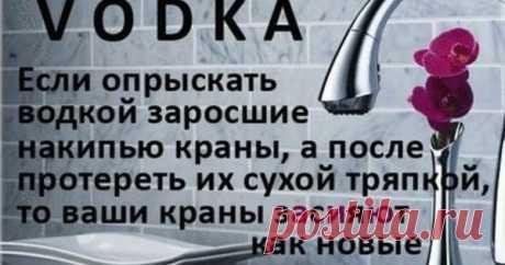 25 вариантов нестандартного использования водки — Сияние Жизни