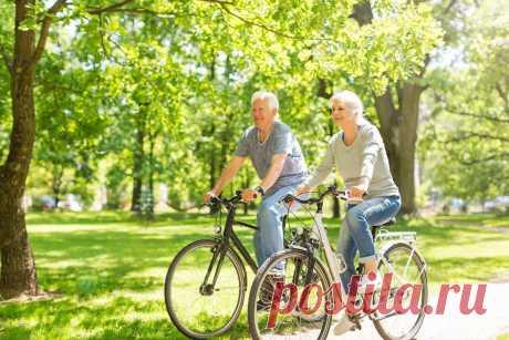 Велосипед для пожилых людей: чем он полезен и как его выбрать?   Velograd.ru   Яндекс Дзен