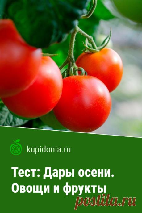 Тест: Дары осени. Овощи и фрукты. Развлекательный тест с картинками об овощах и фруктах, состоящий из 20 интересных вопросов.