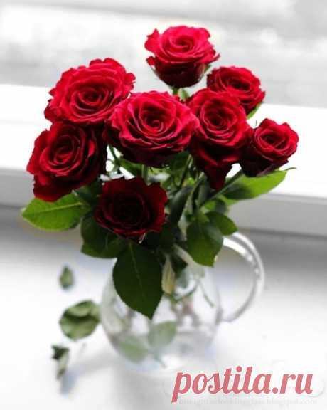 Есmь mо, чему мы улыбаемся всегда, незавuсuмо оm насmроенuя. Это цвеmы!....