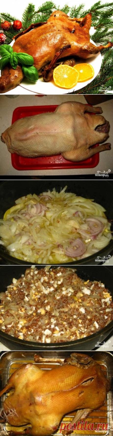 Гусь в духовке с гречкой - пошаговый рецепт с фото на Повар.ру