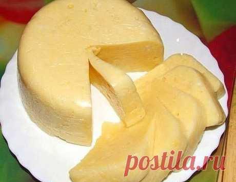 Очень вкусный домашний сыр.  500 мл молока  500мл кефира  2 яйца  Соль по вкусу  Взбить вместе яйца, кефир и соль и влить в кипящее молоко. Снова довести до кипения, постоянно помешивая, но не кипятить, выключить огонь и дать постоять 3-5 минут, отцедить через марлю, подвесить марлю с сыром и дать сыворотке полностью стечь (около часа) и положить под пресс. Сверху груз весом около 1 кг. Через 2-3 часа убрать в холодильник.  Можно добавить 1-2 чайной ложки тмина, по желанию.