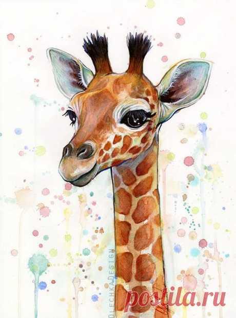 Прикольные и красивые картинки, рисунки животных для срисовки