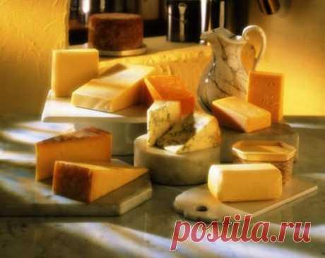 Как правильно хранить сыр - почему сыр умирает при низкой температуре?
