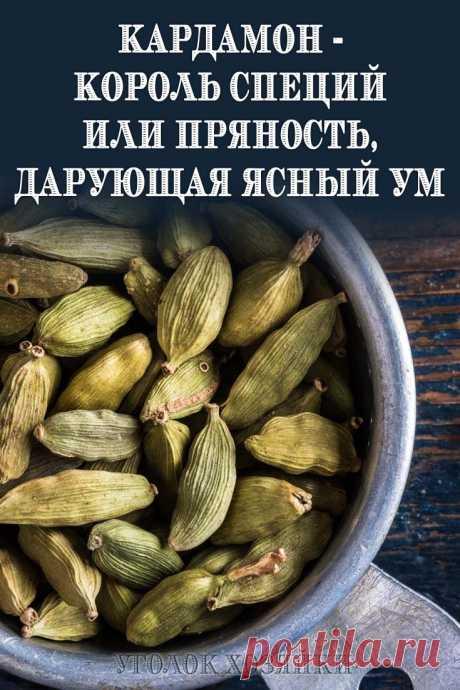 Кардамон, или как называют его на Востоке, «райское зерно» — одна из самых эффективных специй, помогающих бороться с лишним весом...
