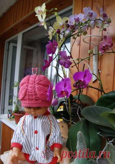 Что на голову?.Детская шапка с бабочкой | Что на голову?