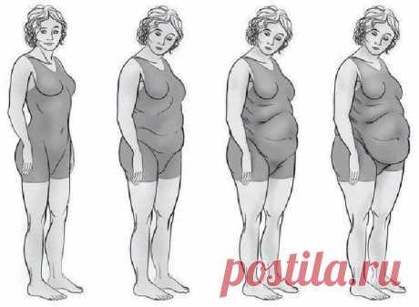 Какой у вас гормональный сбой в организме: Легко узнать по типу фигуры - Советы для женщин