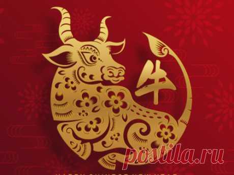 Какого числа китайский Новый год в 2021 году и как нужно встречать год Быка? Приближается Китайский Новый год, поэтому важно запрограммировать себя на успех. Позитивные мысли в любой переходный период очень важны, потому что они позволяют сохранять оптимизм, притягивать везение и не фокусироваться на неприятностях. Новый год — время очищения от всего лишнего.