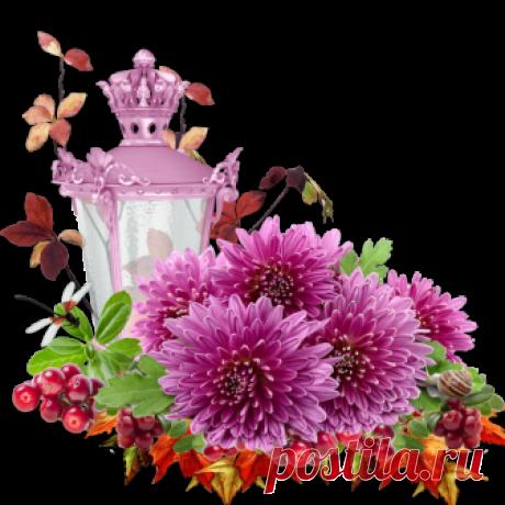 "Клипарт в формате PNG ""Осенние цветы"""