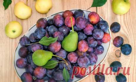 10 овощей и фруктов для хорошего пищеварения