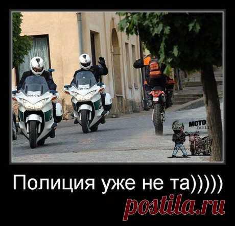 полиция мать вашу