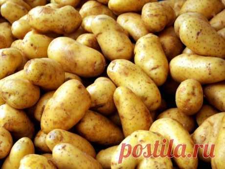Овощ в быту: 9 невероятных способов полезного применения картошки