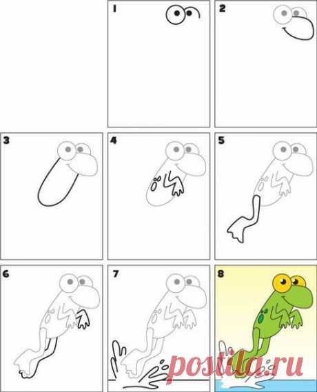 We draw animals