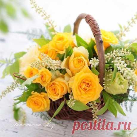 Поздравляем с Днём рождения всех, кто родился сегодня - 24 января 😘 😘