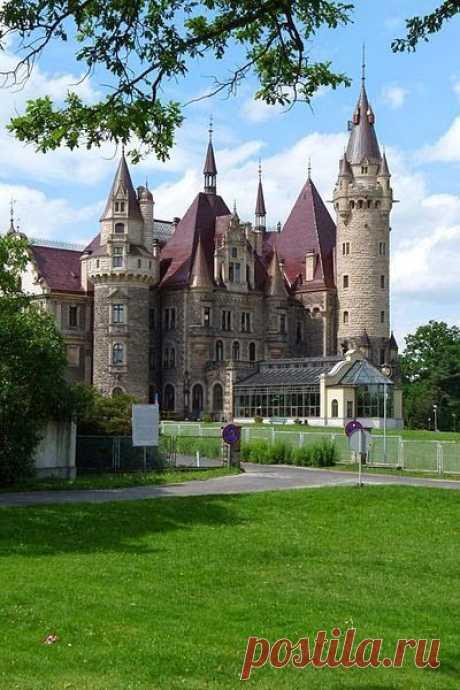 Los palacios y en casa