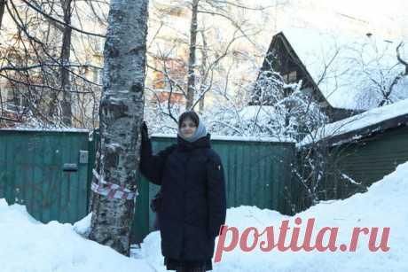 Дачникам дали пять простых советов, как защитить зимой загородный дом от воров - Вечерняя Москва