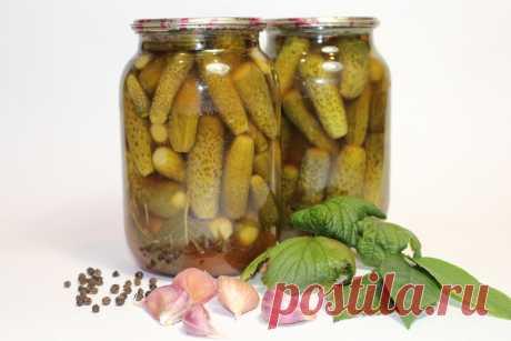 Хрустящие огурцы с кетчупом чили (заготовки, консервация, закрутки) - Простые рецепты Овкусе.ру