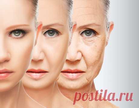 10 лучших антивозрастных масел для более молодой кожи - Журнал для женщин Позаботьтесь о вашей коже! С возрастом наша кожа производит меньше масла и теряет гибкость. Это, в свою очередь, приводит к появлению тонких линий и морщин вокруг глаз. Миллионы женщин во всем мире отчаянно пытаются устранить морщины или, по крайней мере, уменьшить их внешний вид. Однако, это сложная задача. Чтобы уменьшить их внешний вид, очень важно […]