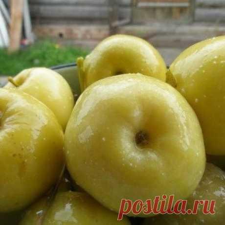 Моченые яблоки в банках...