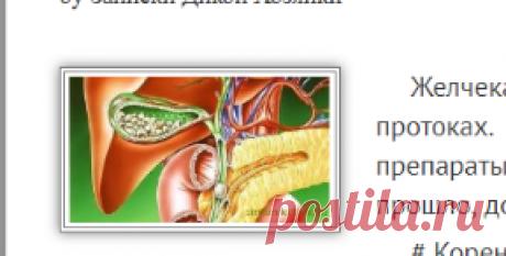Желчнокаменная болезнь. Лечение желчнокаменной болезни сборами лекарственных трав