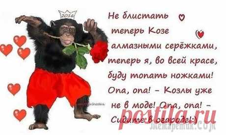 Новогодний салат Обезьянка - символ 2016 года Простые рецепты Ovkuse.ru