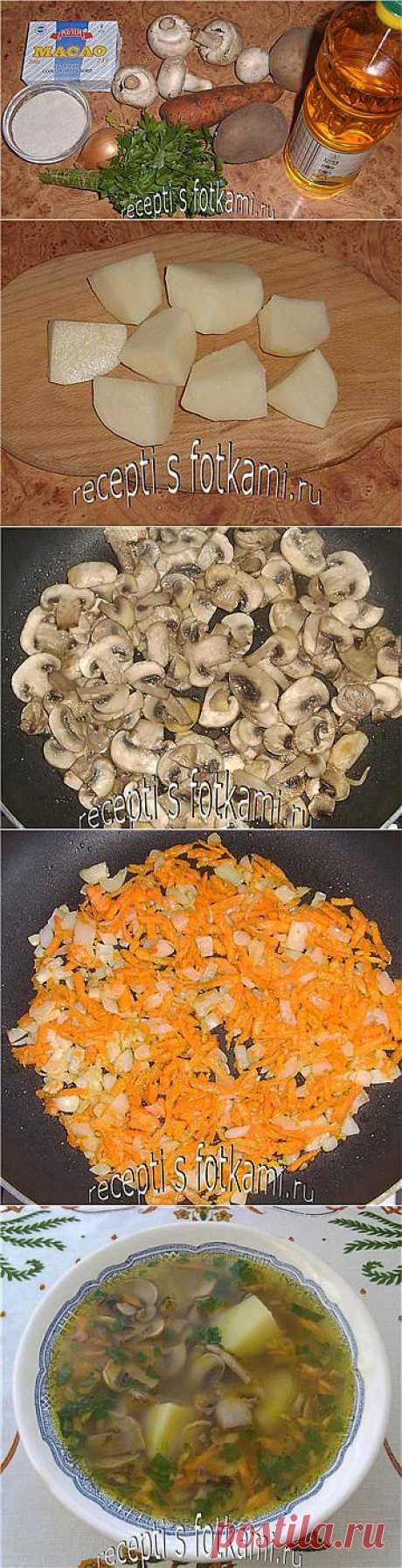 Как приготовить грибной суп из шампиньонов - пошаговый  с фото