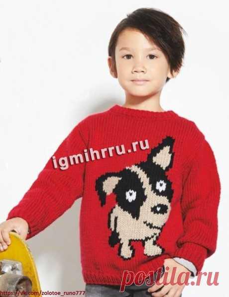 ДЛЯ МАЛЬЧИКА 2-10 ЛЕТ. ПУЛОВЕР С МОТИВОМ «ЩЕНОК». Забавный щенок будет всегда со своим маленьким хозяином, потому что он «удобно устроился» на ярком детском пуловере  Размеры: на 2 (4) 6 (8) 10 лет  Вам потребуется: 4 (5) 6 (7) 8 мотков красной, по 1 мотку черной и светло-бежевой пряжи Phildar «Phil Pаrtnеr 6» (50% полиамида, 25% акрила, 25% гребенной шерсти; 66 м/50 г); спицы № 4,5 и 5,5.  Техника вязания. Резинка: попеременно 1 лиц., 1 изн. Лицевая гладь: лицевые ряды – ...