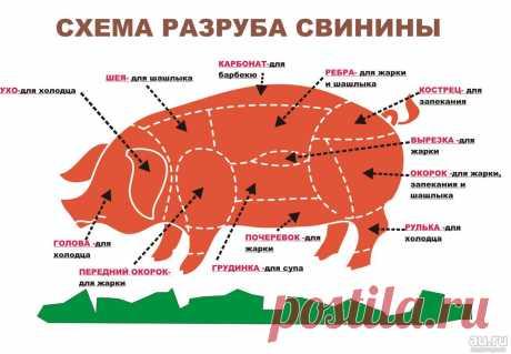 svinina-vyrezka-sosnovoborsk-podgornyj-1-7861436.jpg (1305×905)