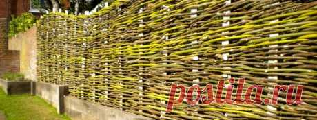 Wattled wooden fence: we do a fencing wattle fence by the hands