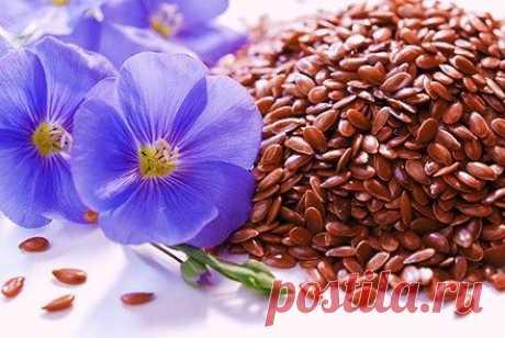Применение семени льна, 6 способов очищения семенами льна