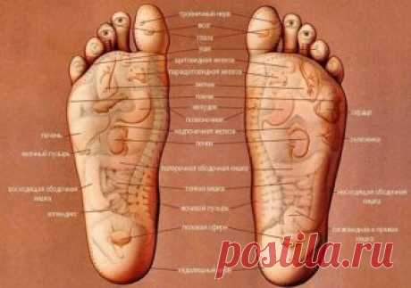 Now I will always mass feet before going to bed! Simple secret of longevity and youth