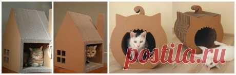 Делаем домик для кошки своими руками: простые решения и подбор материалов