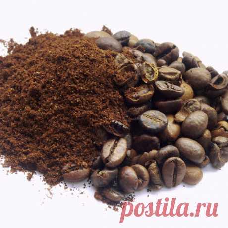 Спитой чай и кофейная гуща как удобрения - Огород без забот