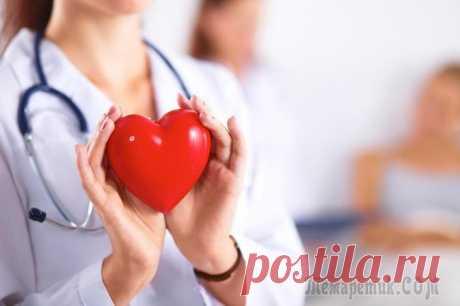 Что такое ишемическая болезнь сердца и чем ее лечить Сердечно-сосудистые заболевания на протяжении не одного десятка лет занимают главенствующие позиции и уносят жизни почти в половине случаев смерти — 48%. Среди них ишемическая болезнь сердца встречает...