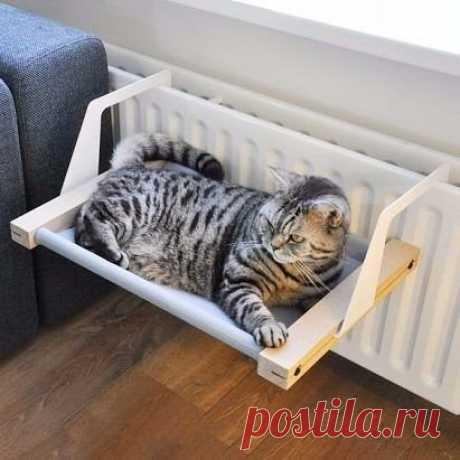 Зимняя лежанка для кота #животные