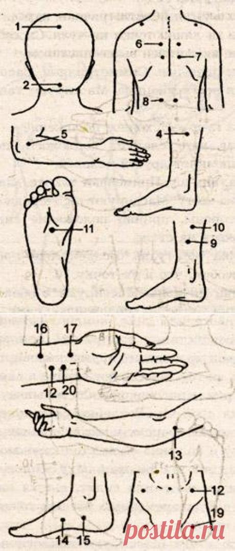 Точки для массажа при повышенном артериальном давлении - Отражение принципов даосской философии в чжэнь-цзю-терапии - Чжэнь-цзю-терапия - Восточная медицина - Vitaminov.net