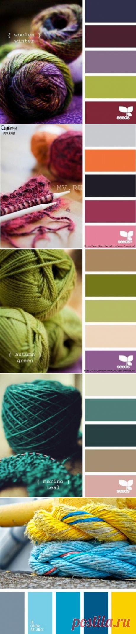 Сочетание цвета в вязании