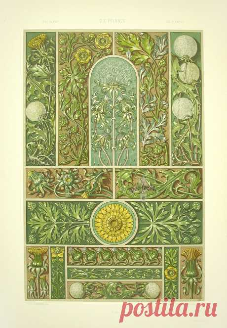Коллекция картинок: Орнаменты Art Nouveau 19 век