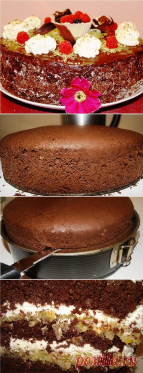 Самые проверенные рецепты - Шоколадный торт Гормон счастья